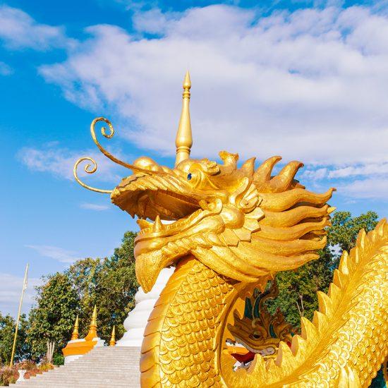 ruta dragón China Autentica